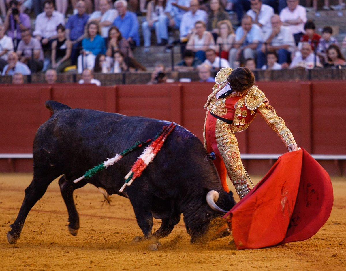 Hombres puerto real en Sevilla-7804