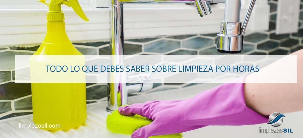Limpieza por horas en Madrid-9066