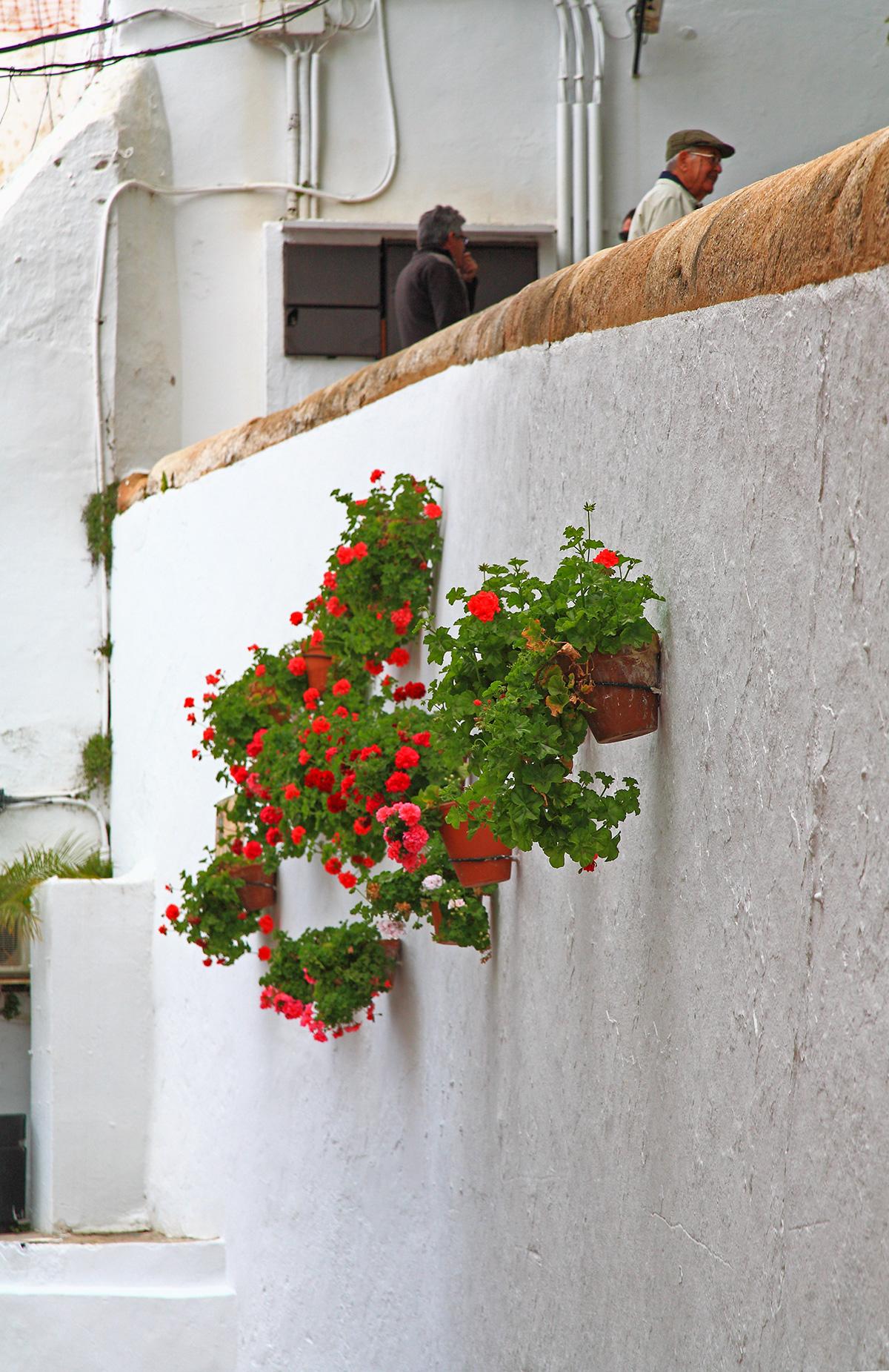 Amistad laguna lara en Marbella-5638